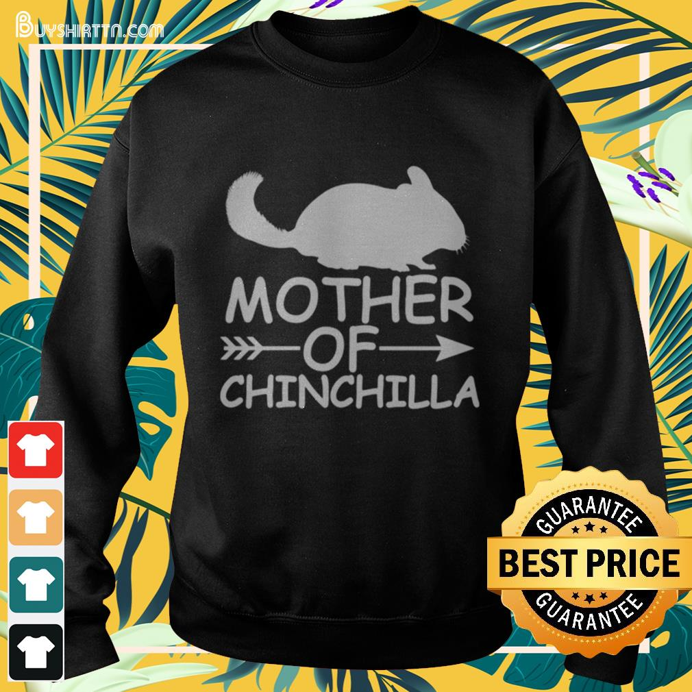 Mother of chinchilla Sweater